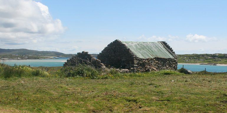 316_view_shed