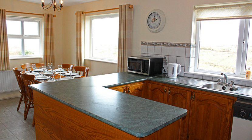 297renvyle_kitchen3