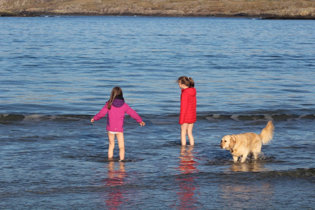pet friendly holiday cottages in connemara