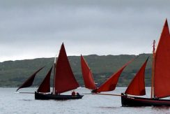 Galway Hookers in Carna